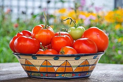 Tomatoes-Bowl.jpg
