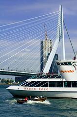 Rotterdam. Erasmus and Spido