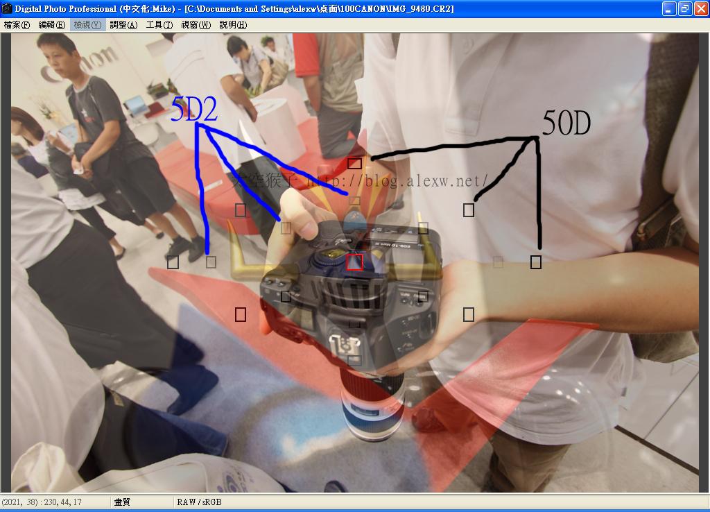50D 5D2對焦點比較