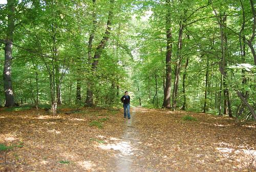 Magda sur un chemin dans la forêt