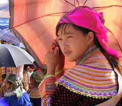 Flower H'mong girl. (young shanahan) Tags: vietnam aasia ih bacha northernvietnam bachamarket