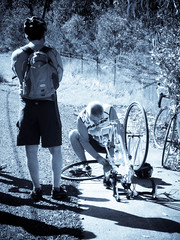 Damn! Flat tire! (Glenorie, New South Wales, Australia) Photo