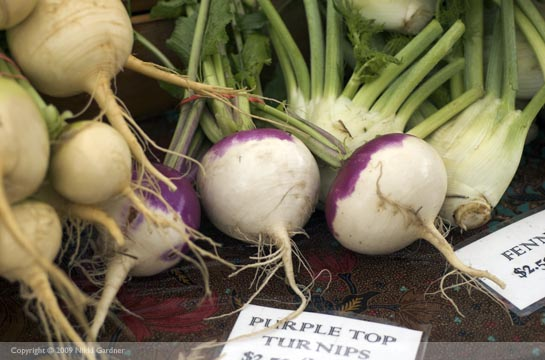 turnips and fennel