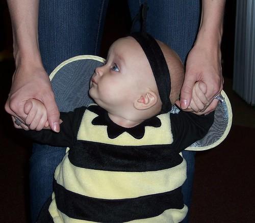 Walking Bee