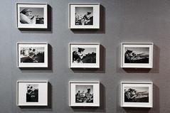 This Is War! - Robert Capa at Work & Gerda Taro (de_buurman) Tags: art netherlands photography rotterdam war fotografie kunst exhibit exhibition nikkor 2009 tentoonstelling robertcapa 18200mmf3556gvr allrightsreserved nederlandsfotomuseum nikond300 gerdataro debuurman edjansen oorlogsfotografie