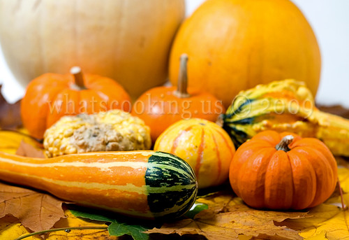 Fall sopes