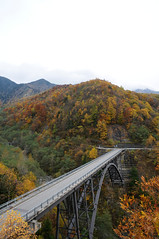 20091025 Kita-Alps Bridge 4 (BONGURI) Tags: bridge nikon autumncolors  takayama  gifu  coloredleaves d300   okuhida    kitaaplsbridge