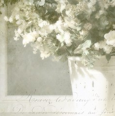 Arrayed in White (luvpublishing) Tags: flowers white texture floral overlay distressed arrangement picnik silkflowers layered fauxvintage shabbychic frenchtext explored magicunicornverybest magicunicornmasterpiece softdreamyandethereal explored13