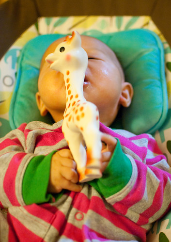 How many other ways can I fit Sophie the giraffe into my mouth?