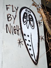 FLY BY NIGHT (nda5150) Tags: white blunt owls masta shoooo