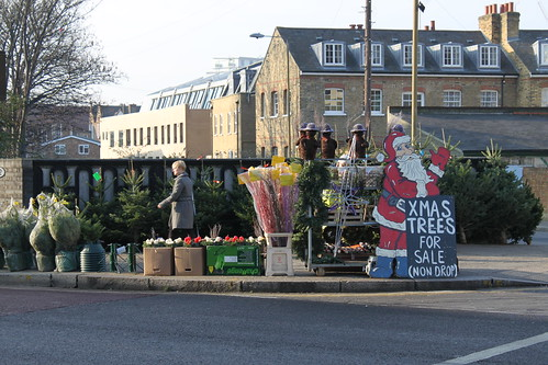 Xmas Trees For Sale