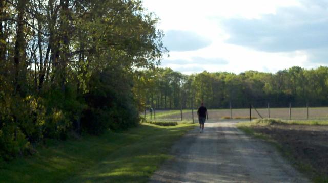 Pilgrim Walk-2