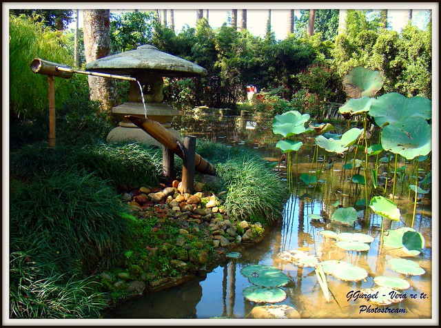 pedras jardim botanico:entre o Brasil e Japão, o Jardim Japonês que integra o Jardim