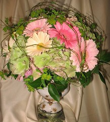 "#41ED $150 Urn arrangement based with hydrangea, topped with a variety of gerbera daisies & bupleurum.  Wired branches create a shelter affect over the bouquet. • <a style=""font-size:0.8em;"" href=""http://www.flickr.com/photos/39372067@N08/3723781536/"" target=""_blank"">View on Flickr</a>"