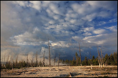 West Thumb Geyser Basin, early morning (rickz) Tags: morning blue trees sky tree clouds forest sunrise nationalpark sand cloudy basin steam yellowstonenationalpark yellowstone geyser thermal westthumb geyserbasin westthumbgeyserbasin