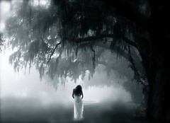 Appearance (Femininelure) Tags: trees woman mist selfportrait fog ghost eerie mystical apparition romanticsurrealism