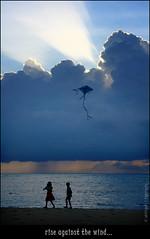 riSe agAinSt tHe wiNd ! (LiGhtSynC) Tags: friends light sky india kite beach against clouds wind kerala rise allepy mararikulam