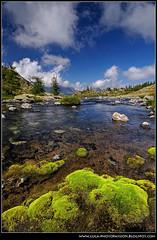 Lago Bianco - Parco nazionale del Monte Avic - Champorcher (Easycon69) Tags: mountain alps alpi montagna valledaosta lagobianco avic vda champorcher barbustel lacvallette