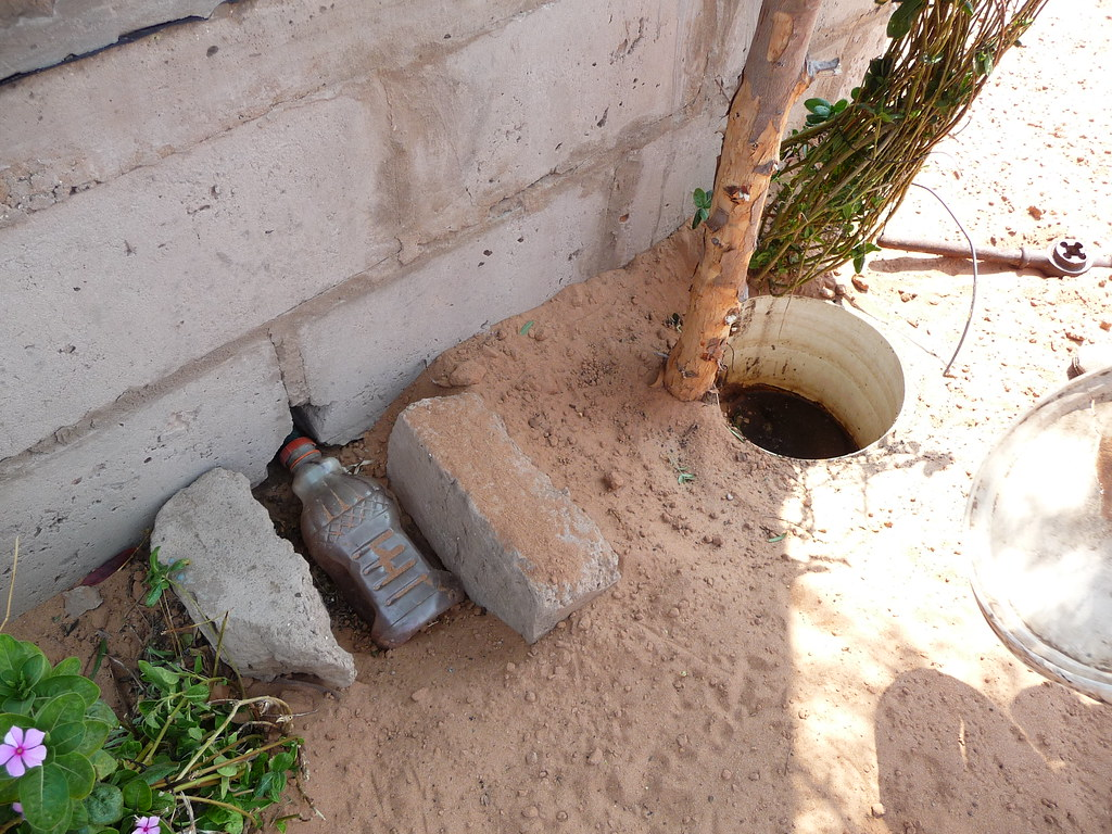 Urine collection and storage