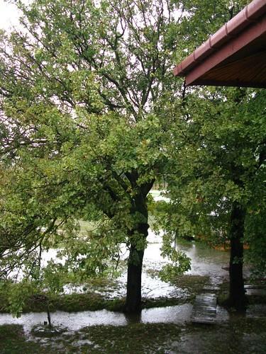 yağmurdan sonra riva