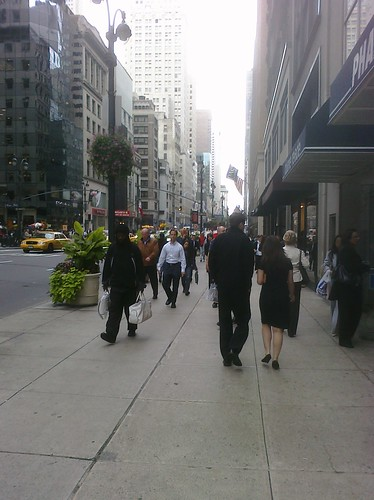 Ptw Fifth Ave