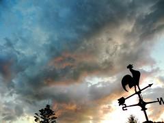 I colori del vento... (JorJey) Tags: sky tree twilight tramonto colours wind cielo winds albero colori vento crepuscolo venti