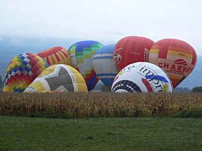 montgolfières et maïs.jpg
