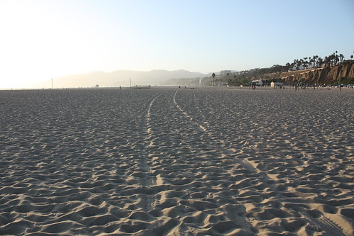 on santa monica's beach