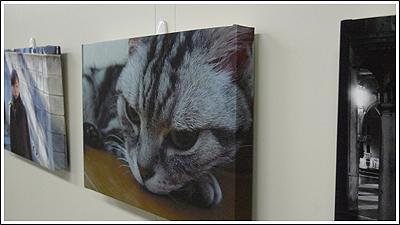 エプソン「PX-5002」で猫の写真をキャンバス風にしました