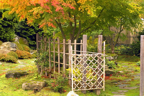 "Japanese Garden by Sharon Mack ""Pure JOY"""
