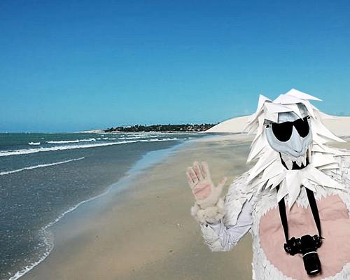 Um viajante cool, ou melhor: Ice Kool