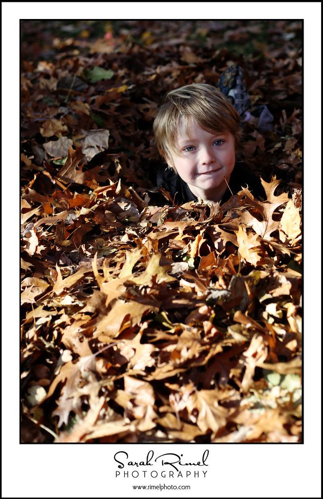 leaf fun 06