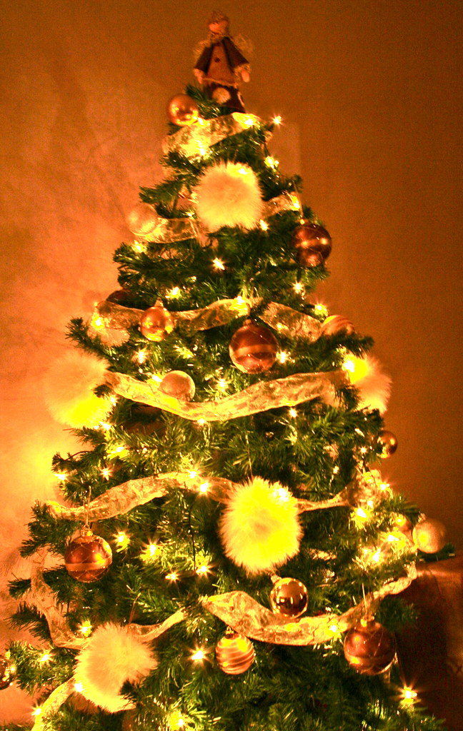 081209_ Digital Rebel_ Christmas Tree