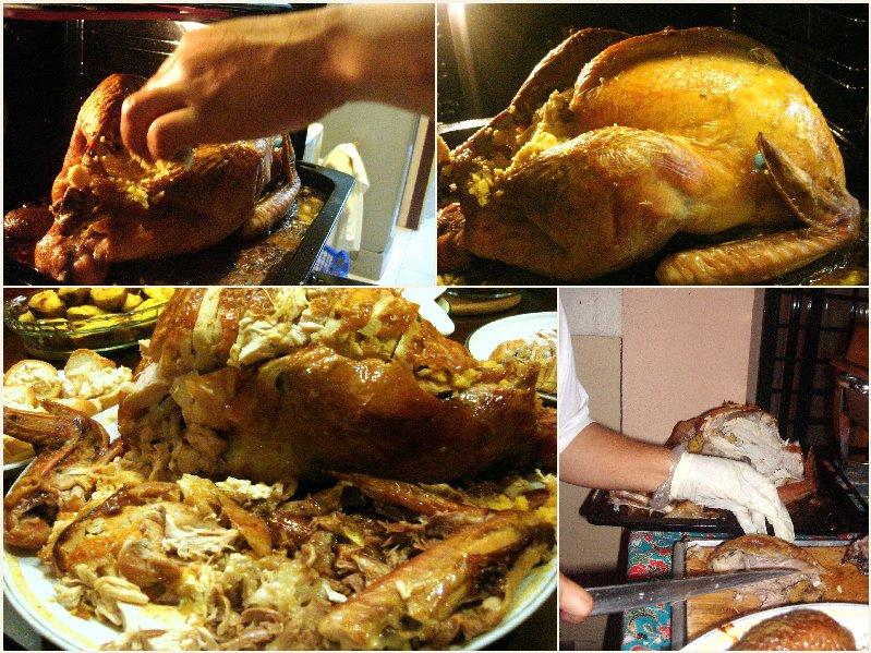 fat turkey