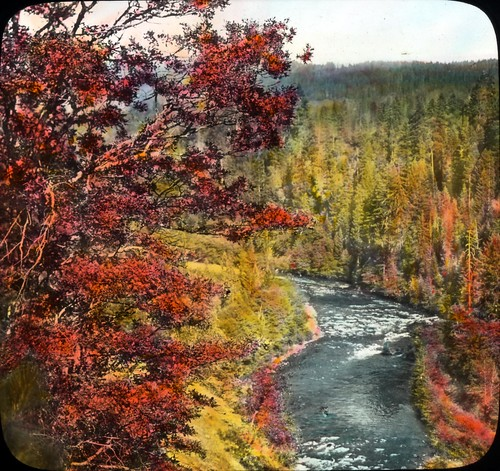 Rogue River, road to Crater Lake