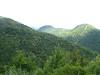 il confine di fronte a Topolò