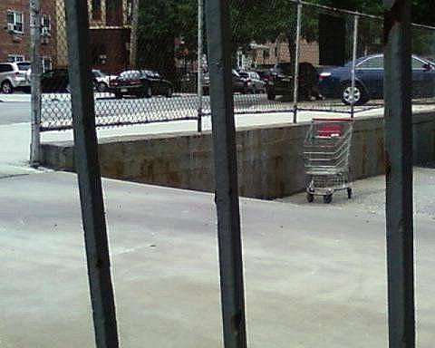 shopping cart empty lot reader submission 1