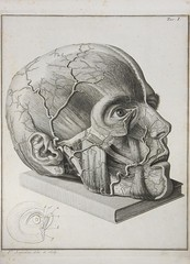 head2 (ChrononautClub) Tags: antiquebooks medicalillustrations vintageengraving