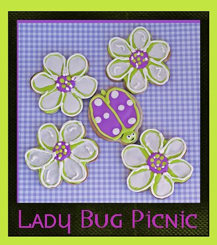 Lady Bug Picnic