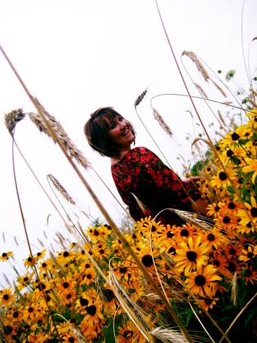 Shelby May -Field of dreams