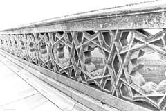 The Ottoman Banister (countcrayon) Tags: star ottoman marble banister topkapipalace islamic osmanl ottomanstyle octogonalstar keremkoc