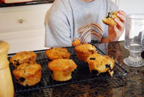 Blueberry Muffins (4)