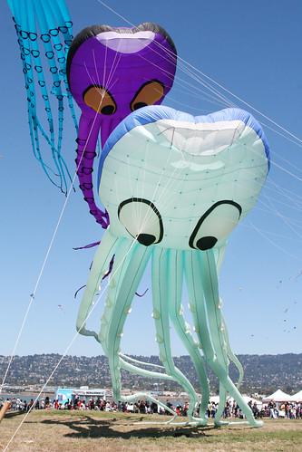 Octopus Kites 3