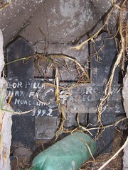 Two people buried in the same grave