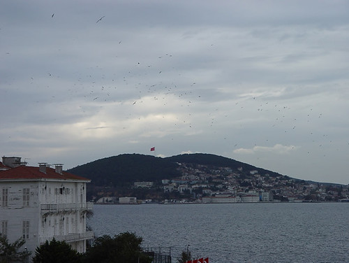 View from a restricted zone
