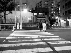 32/365: Old in Kitashinjuku (joyjwaller) Tags: street old city blackandwhite love japan night tokyo evening support couple intersection lonely crosswalk companionship walkinghomefromwork theelderly project365 kitashinjuku deludedfantasiesihaveaboutaging