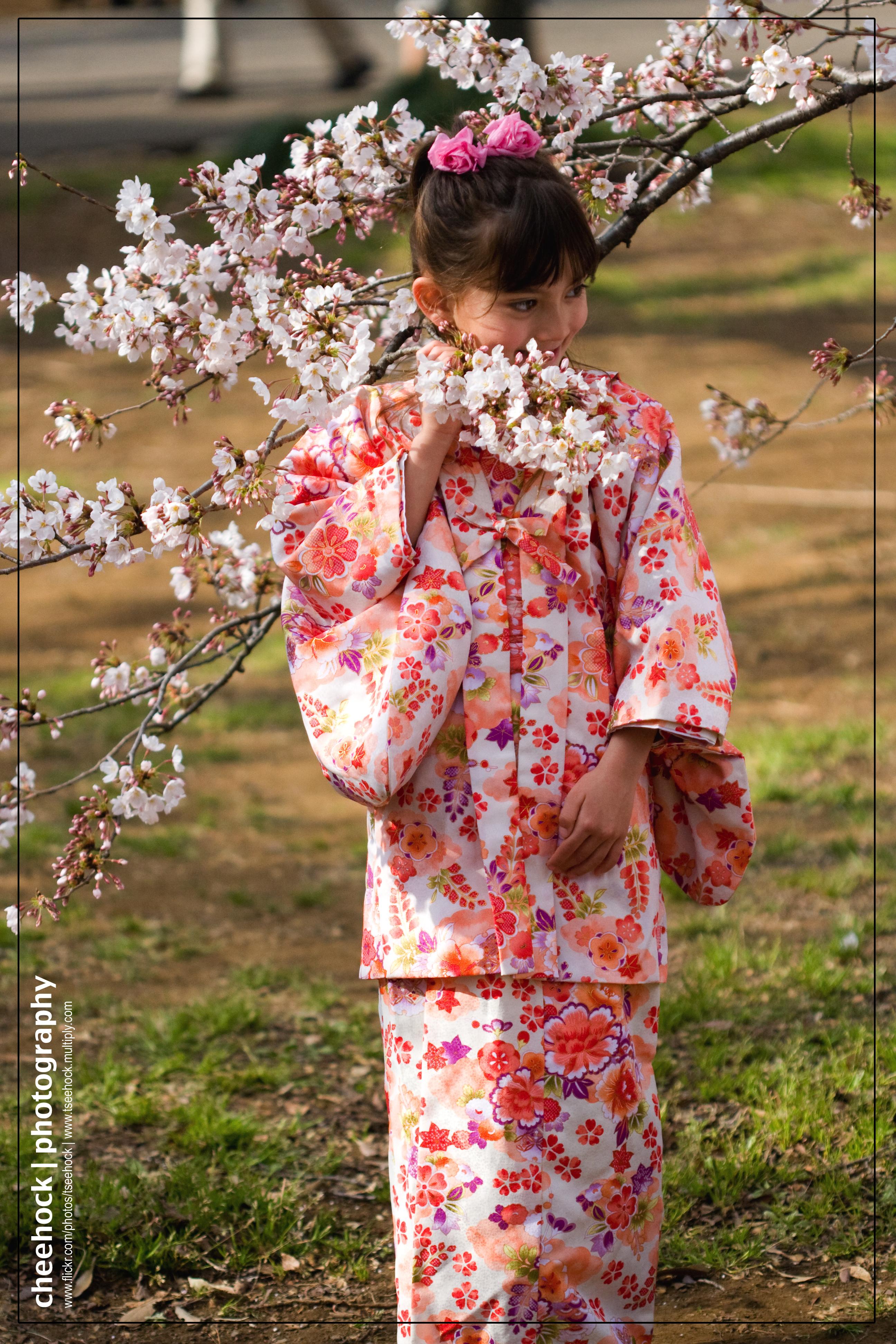 wallpaper sasuke kis sakura gif
