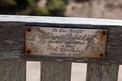 to our friend (nosha) Tags: california park ca wood summer beach beautiful beauty dedication plaque bench nikon pattern grain august tribute organic 2009 ano nuevo anonuevo lightroom emeritus d300 105mm f13 blackmagic 18200mm nosha 1320sec 0ev 18200mmf3556 nikond300 summer2009 1320secatf13 californiaoregon2009