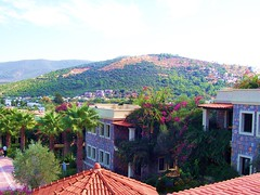 Zeytinada Hotel - Bodrum Turkey (October 2009) (CharmingBodrum) Tags: turkey october 2009 bodrum otel ekim zeytinada hoteltorba