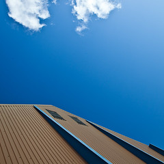 Brown vs. Blue (SteenT) Tags: blue sky bluesky steentalmark talmark